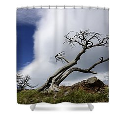 Leaning Just A Little Shower Curtain by Bob Christopher