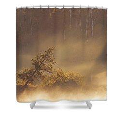 Leaning Tree In Swirling Fog Shower Curtain by Larry Ricker
