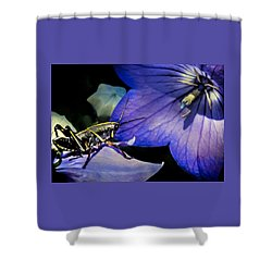 Contemplation Of A Pistil Shower Curtain by Karen Wiles