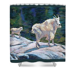 Learning To Walk On The Edge Shower Curtain