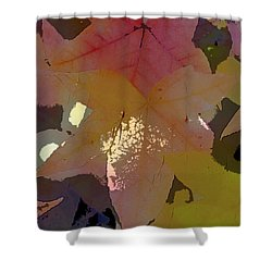 Leaves 8 Shower Curtain