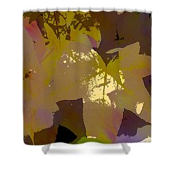 Leaves 9 Shower Curtain by Pamela Cooper