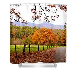 Shower Curtain featuring the photograph Leaves A'fallin by Geraldine DeBoer