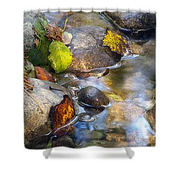 Leaves And Needles Shower Curtain