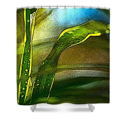 Leaves And Sky Shower Curtain