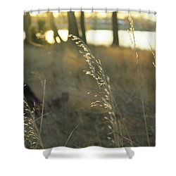 Leaves Of Grass Shower Curtain