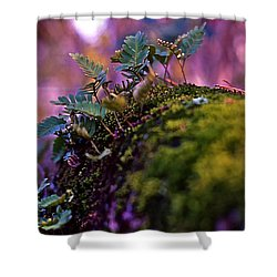 Leaves On A Log Shower Curtain by Bellesouth Studio