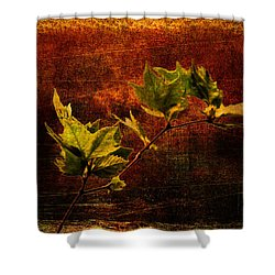 Leaves On Texture Shower Curtain