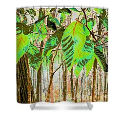 Leaves Shower Curtain by Sally Simon