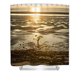 Shower Curtain featuring the photograph Leftover Bouquet by Carol Lynn Coronios