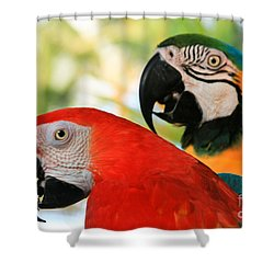 Lele Shower Curtain by Sharon Mau