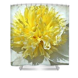Shower Curtain featuring the photograph Lemon Drop by Lilliana Mendez