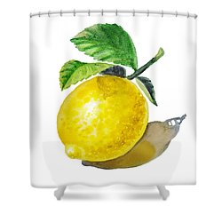 Artz Vitamins The Lemon Shower Curtain by Irina Sztukowski
