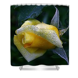 Lemonaid Shower Curtain by Doug Norkum