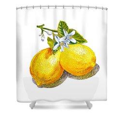 Lemons And Blossoms Shower Curtain by Irina Sztukowski