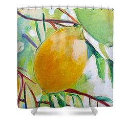 Lemons And Lime Shower Curtain