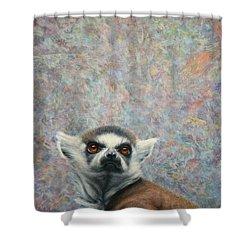 Lemur Shower Curtain by James W Johnson