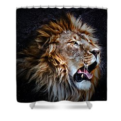 Shower Curtain featuring the photograph LEO by Elaine Malott