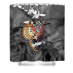 Leopard Lacewing Butterfly Dthu619bw Shower Curtain by Gerry Gantt