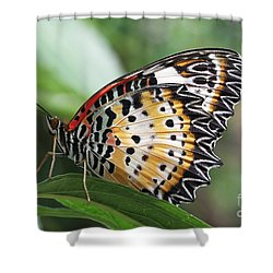 Leopard Lacewing Butterfly Shower Curtain by Judy Whitton