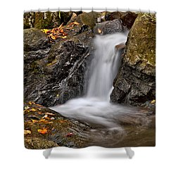 Lepetit Waterfall Shower Curtain by Susan Candelario