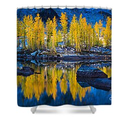 Leprechaun Tamaracks Shower Curtain by Inge Johnsson