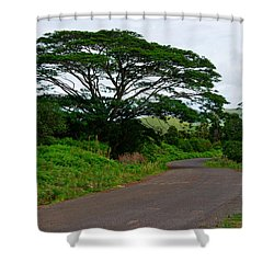 Less Traveled Road Shower Curtain