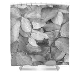 Shower Curtain featuring the photograph Let It Be by Heidi Smith