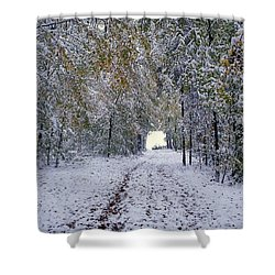 Shower Curtain featuring the photograph Let It Snow by Felicia Tica