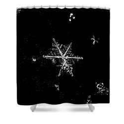 Let It Snow Shower Curtain by Sara Frank