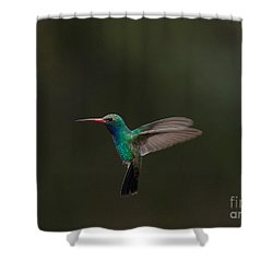 Shower Curtain featuring the photograph Let Me See You Fly  by Ruth Jolly