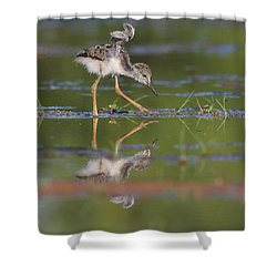 Let Me See Your Wings Shower Curtain