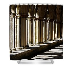 Shower Curtain featuring the photograph Let The Sun Shine Through by Wendy Wilton