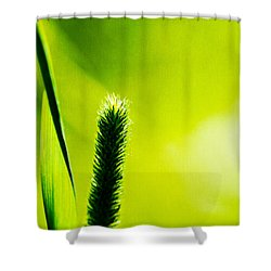 Let World Be Green Shower Curtain