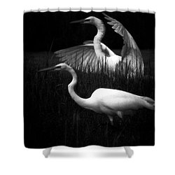 Let's Just Wing It Shower Curtain by Robert McCubbin