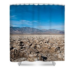 Let's Play Golf Shower Curtain by George Buxbaum