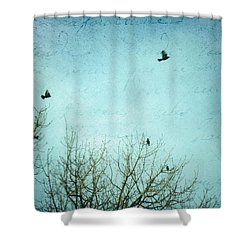 Shower Curtain featuring the photograph Letters Of Flight by Lisa Parrish