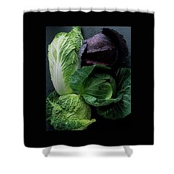 Lettuce Shower Curtain by Romulo Yanes