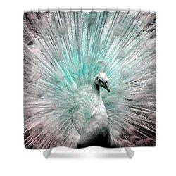 Leucistic White Peacock Shower Curtain