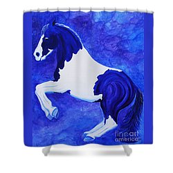 Levade Shower Curtain