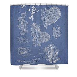 Leveillea Jungermannioides Shower Curtain by Aged Pixel
