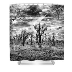 Shower Curtain featuring the photograph Levy Lake by Howard Salmon