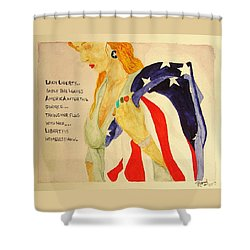 The Divorce Of Liberty Shower Curtain