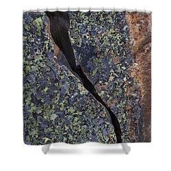 Lichen On Granite Shower Curtain by Heiko Koehrer-Wagner
