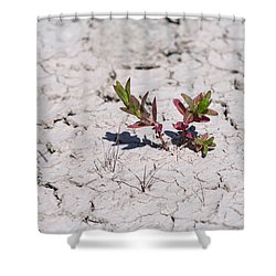 Life Against All Odds Shower Curtain