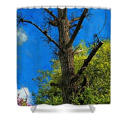Life And Death Shower Curtain by Mariola Bitner