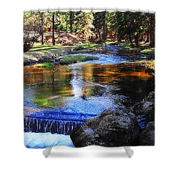 Life By A Babbling Brook Shower Curtain by Natalie Ortiz