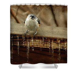 Life Can Be Tough Shower Curtain by Lois Bryan