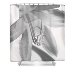 Life In Miniature  Shower Curtain