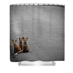 Life Is An Unknown Highway Shower Curtain by Jim Garrison